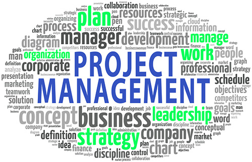 IT Project Manager Word Cloud
